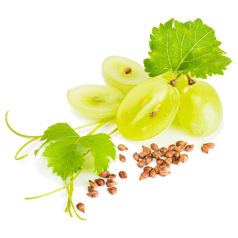 Grape Seed Extract | Skin Care Key Ingredient