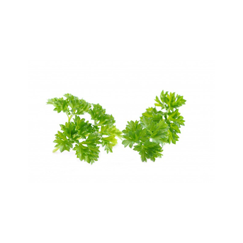 Vitamin K1 | Phytonadione | Parsley | Skin Care Key Ingredient